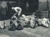 foto-Anna-Palazzo-0910-Trapani_-_Mattanza_Teste_di_tonno_recise_anno_1952.jpg