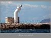 009-Trapani-_Faro-Quando_il_vento_soffia_forte.jpg